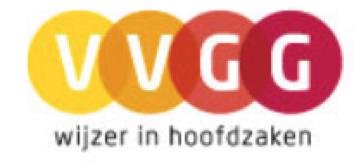 Flemish Association for Mental Health Care (association that represents clients and mental health care institutions) in Belgium